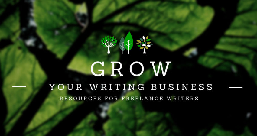 Grow Your Writing Business: Co-Writing Sessions, Critical Review and Online Coaching